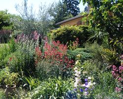 Paysage de Provence - Tarare -  Entretien