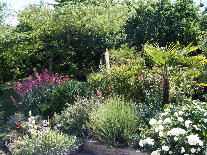 Paysagiste lyon am nagement ext rieur paysage de provence for Paysagiste lyon